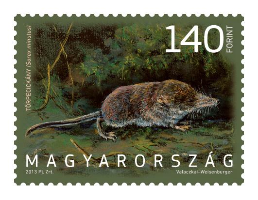 Magyarország állatvilága cickány