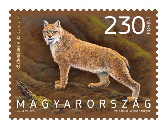 Magyarország állatvilága hiúz